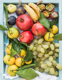 Various colorful tropical fruit selection in blue wooden tray, top view. Stock Image