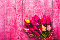 Various of colorful tulips_1 Stock Images