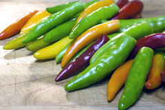 Various colors of peppers. Stock Photos