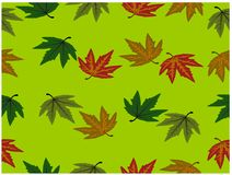 The various colors of beautiful leaves on the soft green background stock illustration