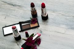 Various Cosmetics on background. Makeup for girls royalty free stock photo