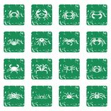 Various crab icons set grunge Stock Photography