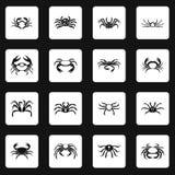 Various crab icons set squares vector Royalty Free Stock Photos