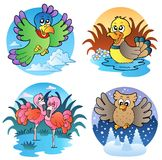 Various cute birds 1 royalty free illustration