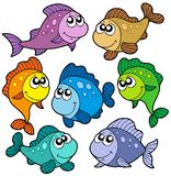 Various cute fishes collection. Vector illustration Stock Photos