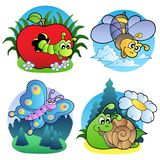 Various cute insect images 1 Royalty Free Stock Images