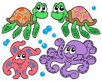 Various cute sea animals collection Royalty Free Stock Image