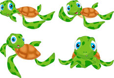 Various cute sea turtle cartoon Royalty Free Stock Photo