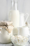 Various dairy products Stock Images