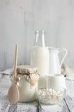 Various dairy products Royalty Free Stock Photos