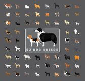 Various Dog Breeds Side View Royalty Free Stock Image