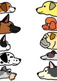 Various dogs profile in two vertical rows. With copy space between stock illustration