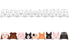 Various domestic pigs face in a row. Set of border with and without colors stock illustration