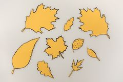 Various drawn autumnal leaves. Isolated on white Royalty Free Stock Photos