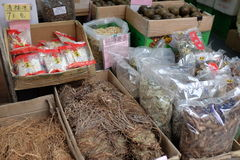 Various dried chinese herbs and roots Stock Image