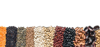 Various dried legumes Royalty Free Stock Photo