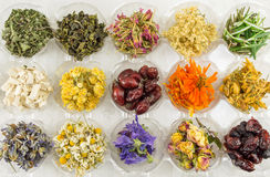 Various dried plants for making perfect tea Royalty Free Stock Photos