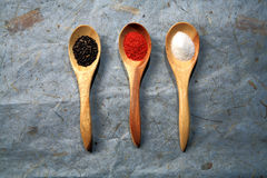 Various dried spices on spoons. Royalty Free Stock Image