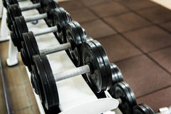 Various dumbbells in gym Stock Photo