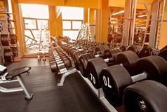 Various dumbbells in gym a bright orange interior Royalty Free Stock Photos