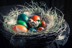 Various Easter eggs in wooden small henhouse Stock Photography