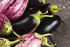 Various eggplants on a dark wooden background Royalty Free Stock Images