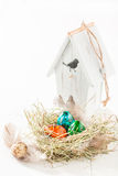 Various eggs for Easter in nest and bird house Royalty Free Stock Images