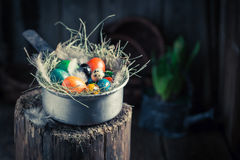 Various eggs for Easter in the nest with hay Stock Photos