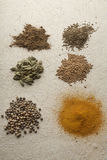 Various Exotic Spices Stock Photos