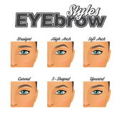 Various eyebrow shapes make-up chart. Make-up information chart showing various eyebrow shapes and looks. Straight, arched and curved eye brow variations, pretty Stock Photo