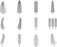Various ferns icons. On white background Vector Illustration