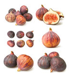 Various figs groups Stock Photos