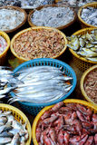 Various fish selling in market Royalty Free Stock Photo