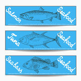 Various fishes banners Royalty Free Stock Image