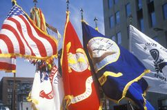 Various Flags of the Armed Forces. United States Army Parade, Chicago, Illinois Royalty Free Stock Image