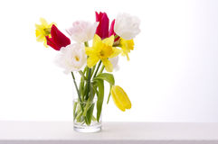 Various flowers. Yellow, red and white tulips, jonquil flower in glass Stock Images