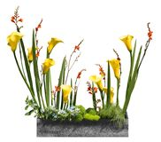 Cropped planter in granite look with different flowers stock image
