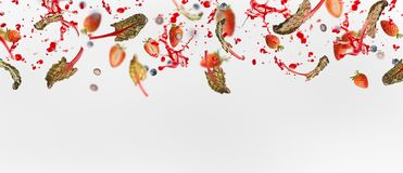 Various flying or falling berries with red chard leaves and splash of juice on white background, banner. Or template stock image