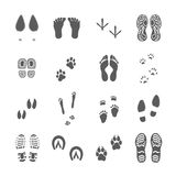 Various Footprints Set Black On White Stock Photo
