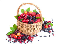 Various forest berries in basket isolated on white. Fresh berries in basket isolated on white background with clipping path Royalty Free Stock Photos