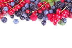 Various berries close-up including blueberries, raspberries, blackberries and currants on a white background. isolated royalty free stock image