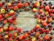 Various fresh berries Stock Photos