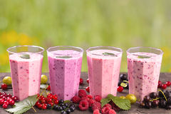 Various fresh berries smoothies Stock Photo