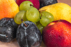 Various fresh bio plums, nectarine, grapes and pears Stock Photography