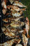 Various fresh fish on the grill stock photography