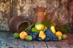 Various fresh fruit Stock Photos