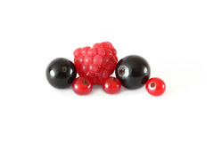 Various fresh fruits berries (raspberries, black currants, red currants) on white background. Various fresh fruits berries (raspberries, black currants, red Royalty Free Stock Image