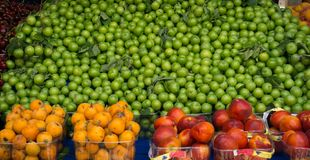 Fresh green pulms, fresh loquats, fresh nectarines. Various fresh fruits on the market counter. Some in pile, some in plastic packages stock images