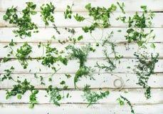 Various fresh green kitchen herbs Royalty Free Stock Photo