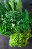 Various Fresh Greens with Lettuce, Mint, Dill and Parsley Royalty Free Stock Photos